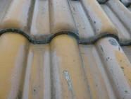 屋根瓦塗装前